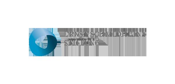 logo_0001_ernststiftung_logo