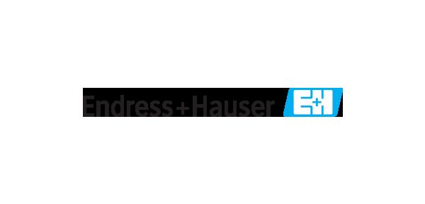 logo_0007_Endress+Hauser